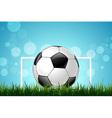 Soccer ball in green grass vector