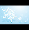 Snowflake on snow vector