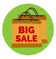 Big sale icon flat style isolated in colored vector