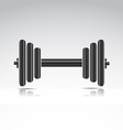 Dumbbell weights vector