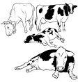 Cow set vector