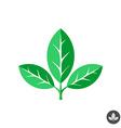 Three green leaves flat logo template vector