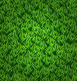 Green grass texture floral nature spring vector