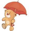 A bear cub and an umbrella vector
