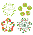 Leaves trees flowers symbols in circle vector