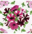 Seamless pattern bouquet of petunias vector