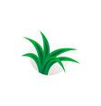 Simple aloe vera plant logo herbal sign vector