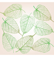 Fresh green leaves background vector