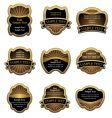 Set of vintage gold labels vector