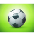 Football or soccer ball vector