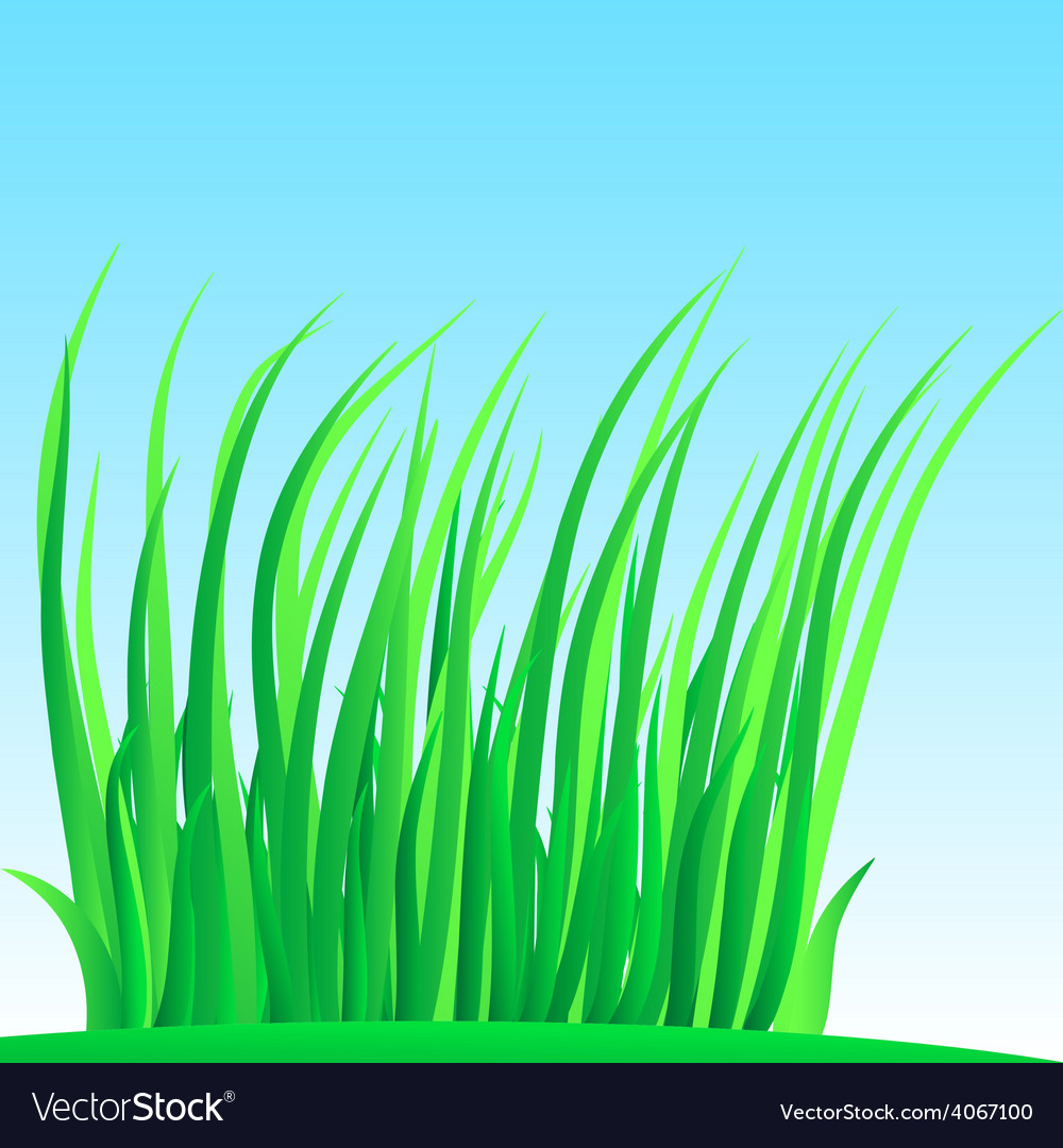 Wisp of lush grass vector | Price: 1 Credit (USD $1)