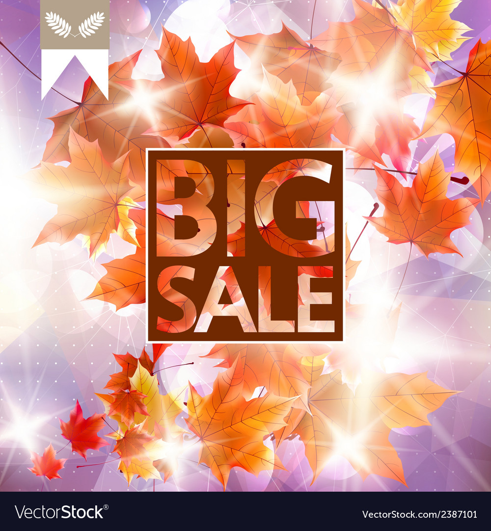Card with maple leaves autumn sale vector | Price: 1 Credit (USD $1)