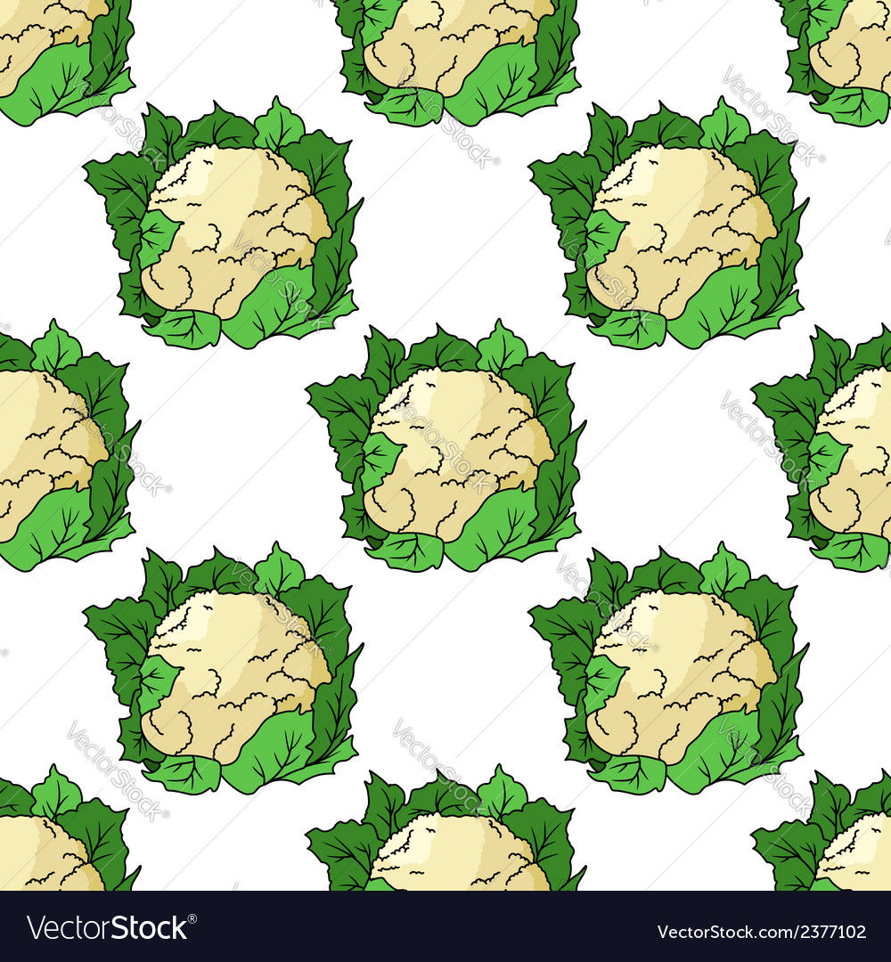 Fresh whole cauliflower seamless pattern vector | Price: 1 Credit (USD $1)