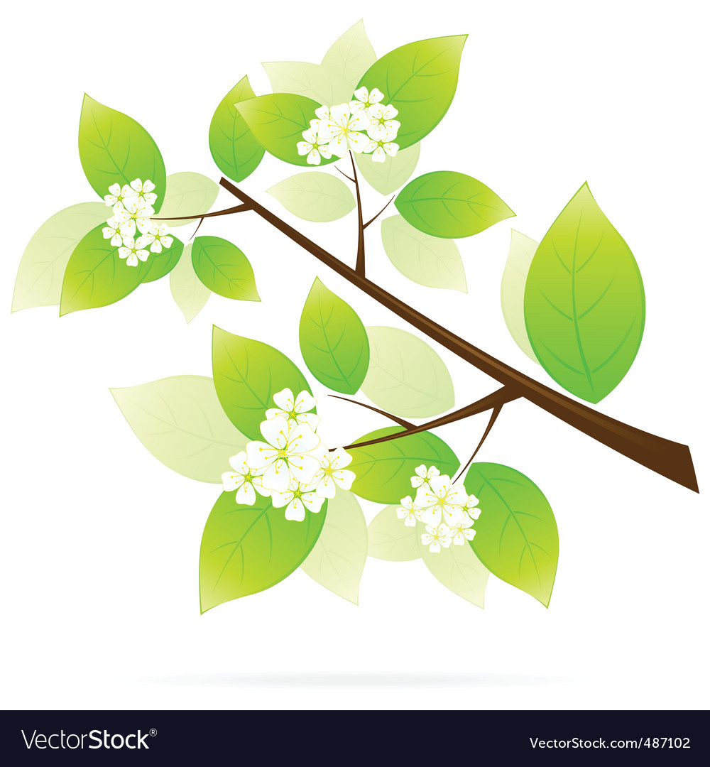 Tree branch icon vector | Price: 1 Credit (USD $1)