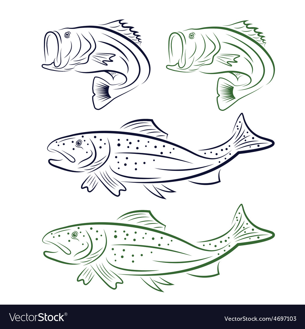 Big mouth bass and trout set vector   Price: 1 Credit (USD $1)