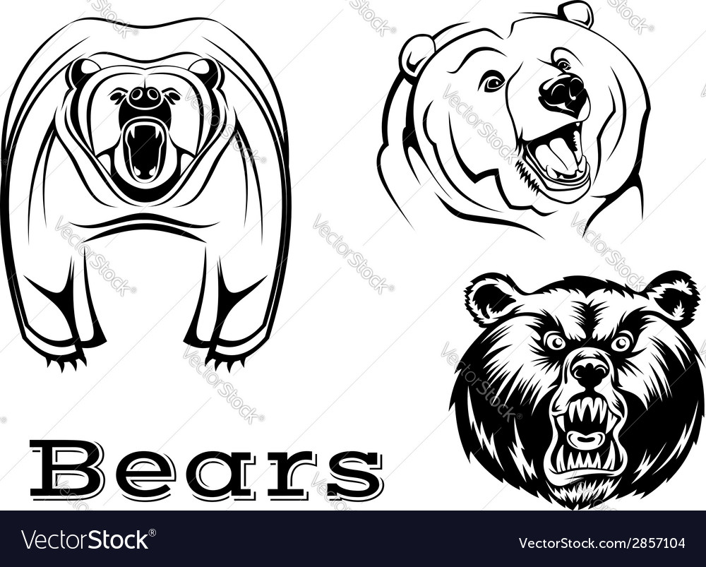 Angry grizzly bears characters vector | Price: 1 Credit (USD $1)