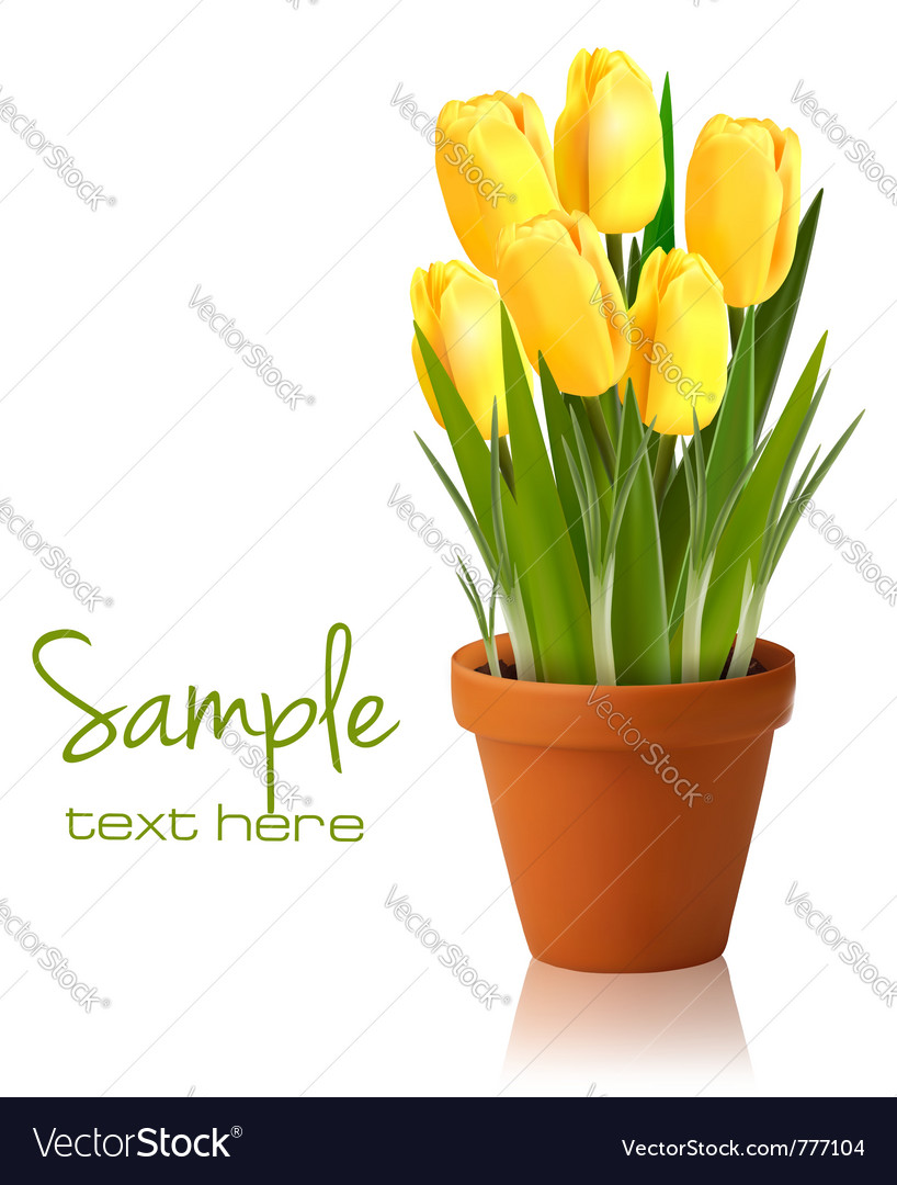 Fresh spring yellow flowers vector | Price: 3 Credit (USD $3)