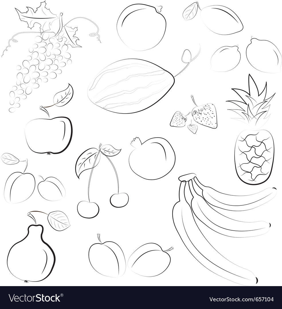 Hand drawn fruit sketch vector | Price: 1 Credit (USD $1)