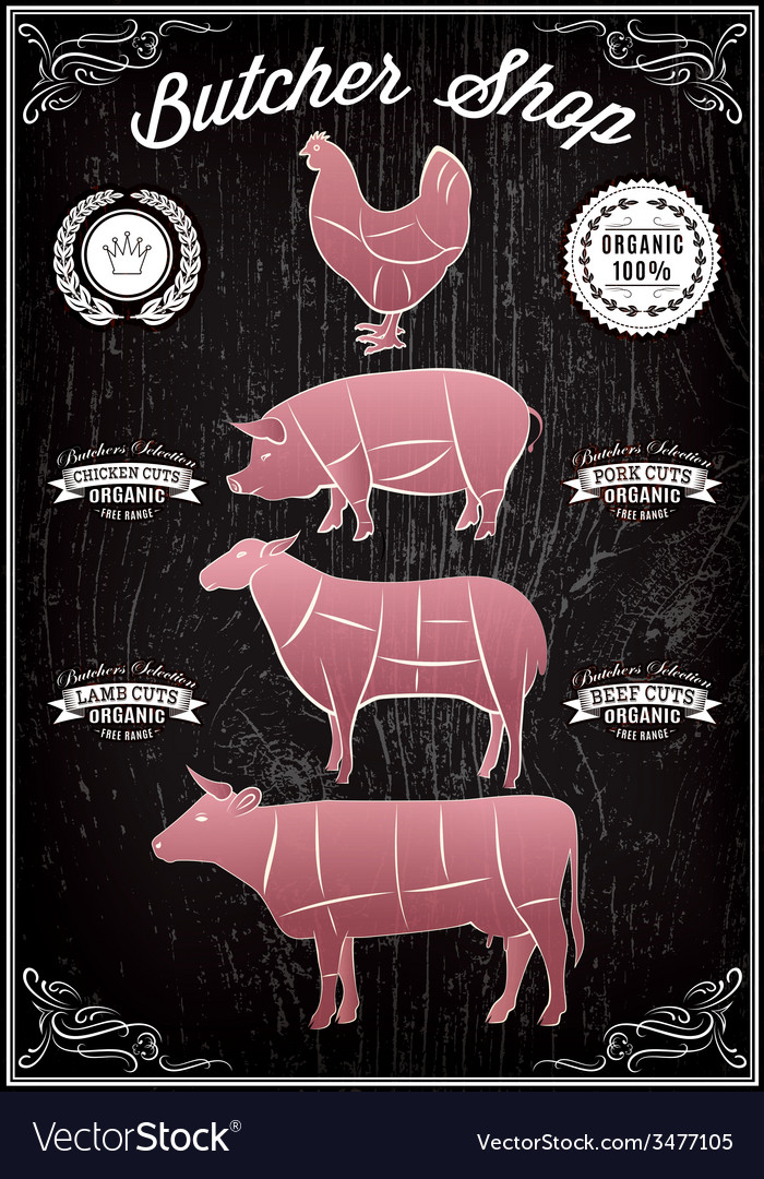 Diagram cut carcasses of chicken pig cow lamb vector | Price: 1 Credit (USD $1)