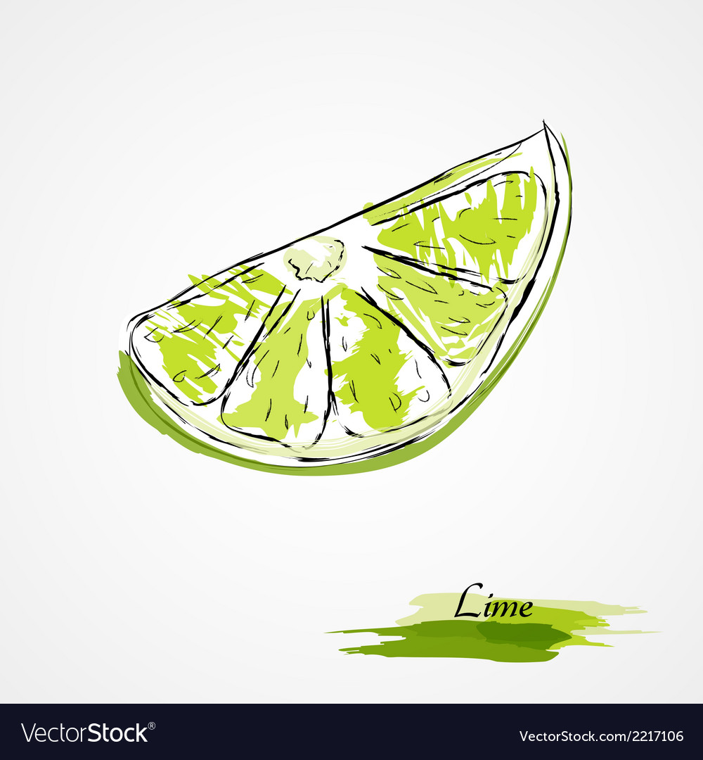 Lime vector | Price: 1 Credit (USD $1)