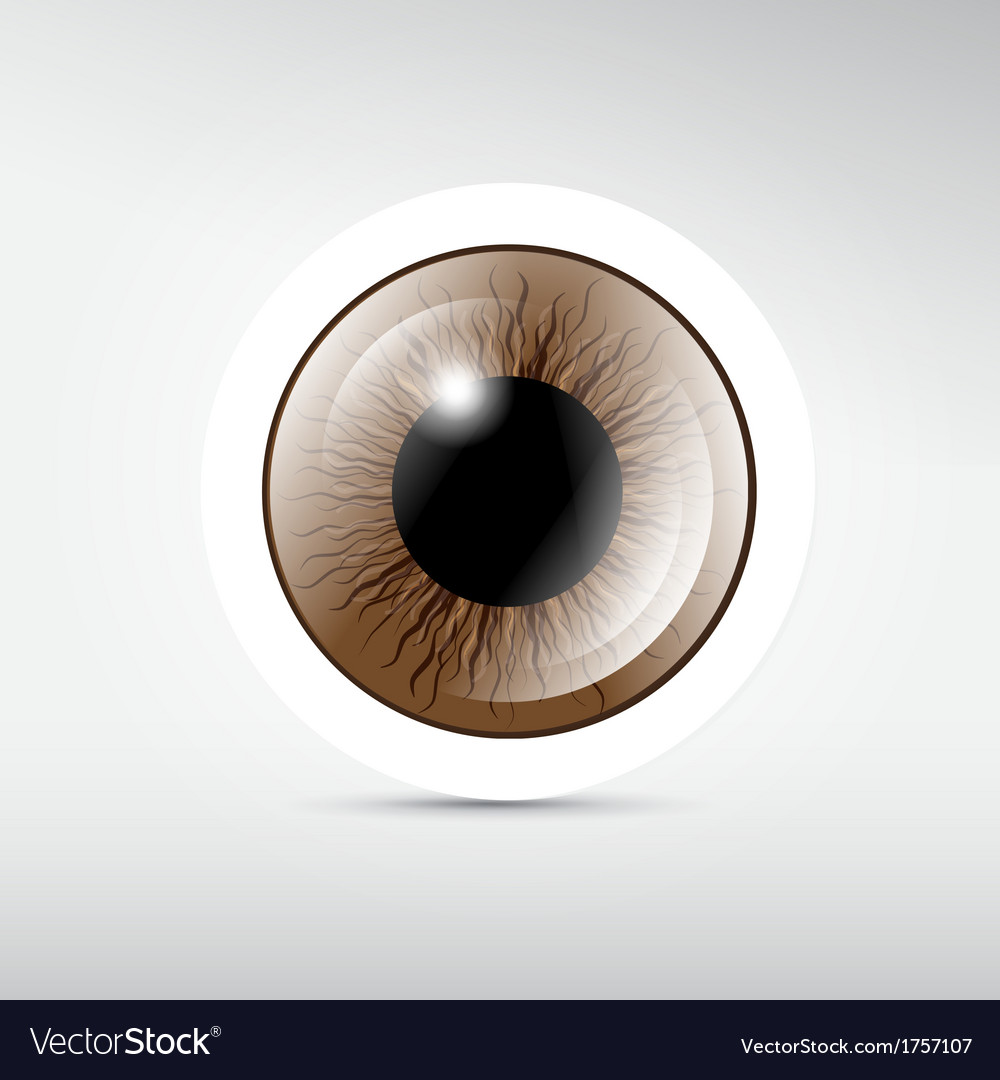 Abstract brown eye on grey background vector | Price: 1 Credit (USD $1)