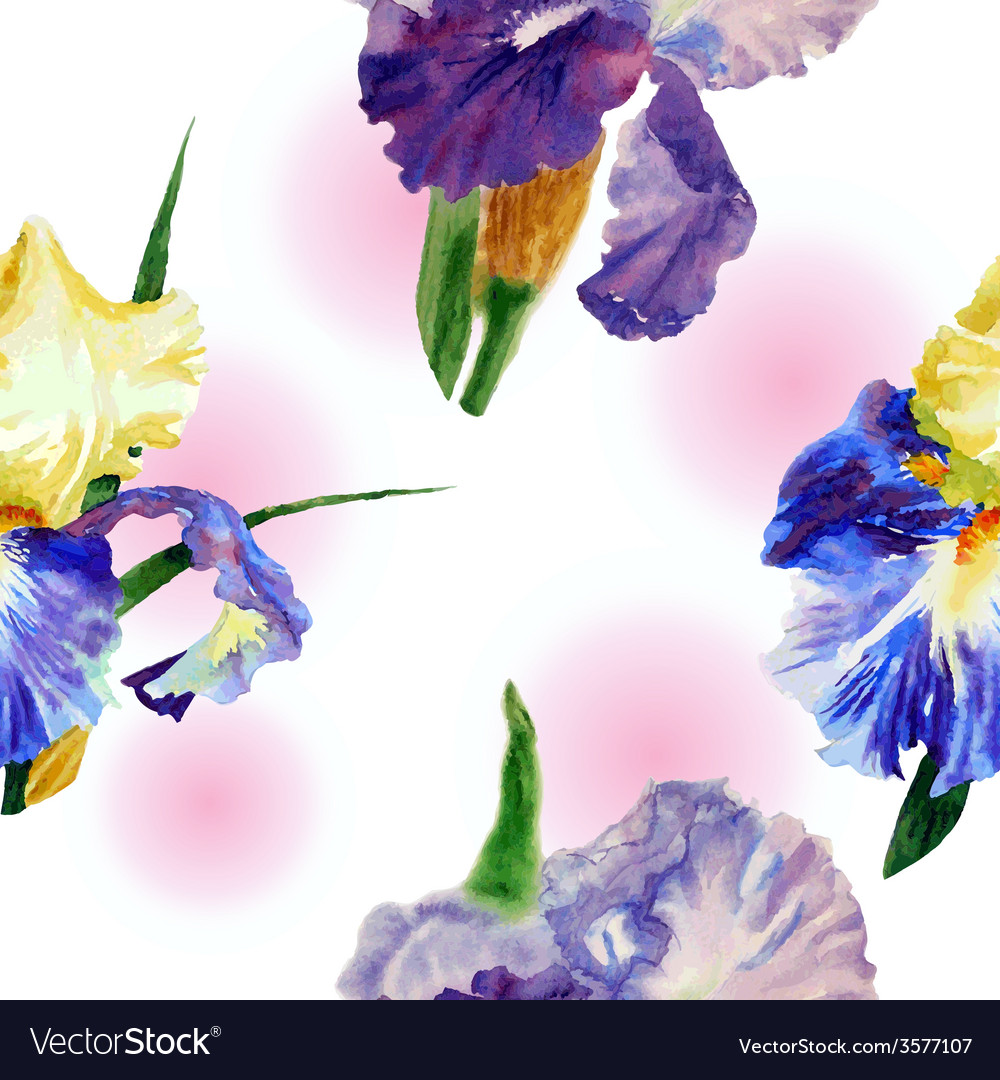 Seamless pattern with color irises1-01 vector   Price: 1 Credit (USD $1)