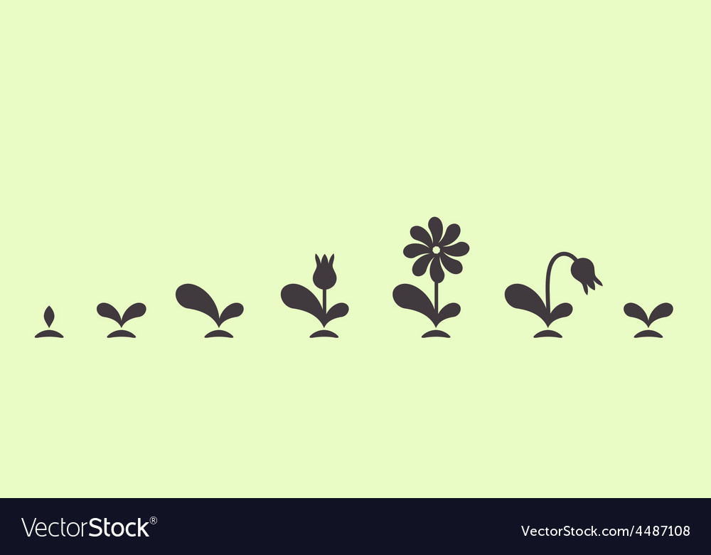 Green plant growing seed foliage flower set vector | Price: 1 Credit (USD $1)