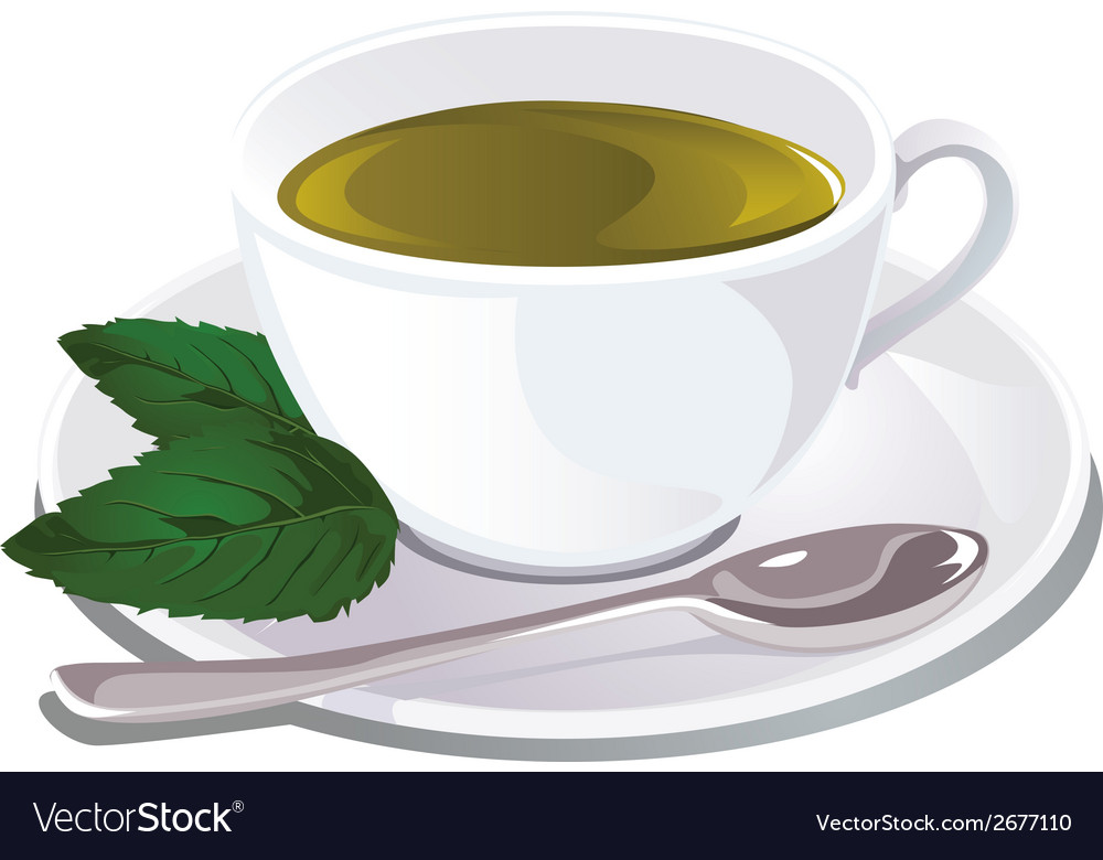 Cup of mint tea vector | Price: 1 Credit (USD $1)