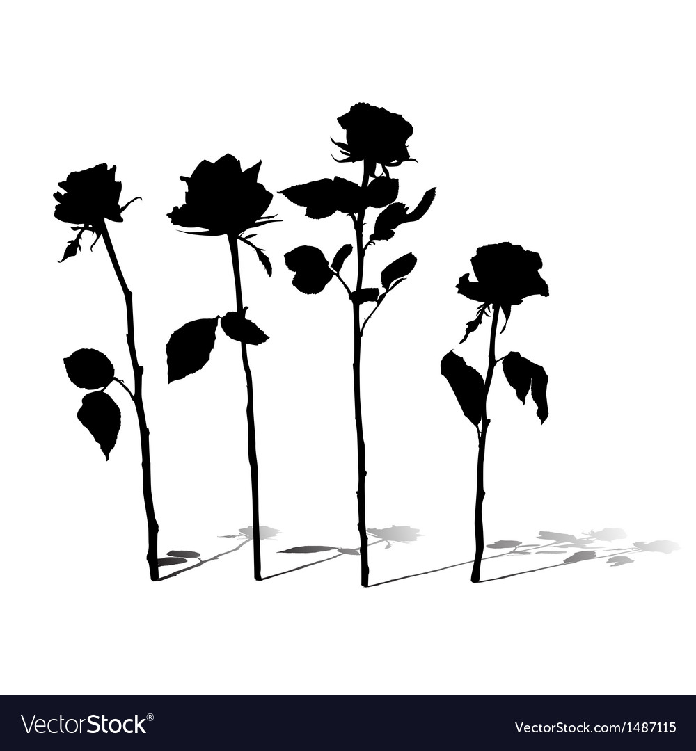 Roses silhouettes vector | Price: 1 Credit (USD $1)