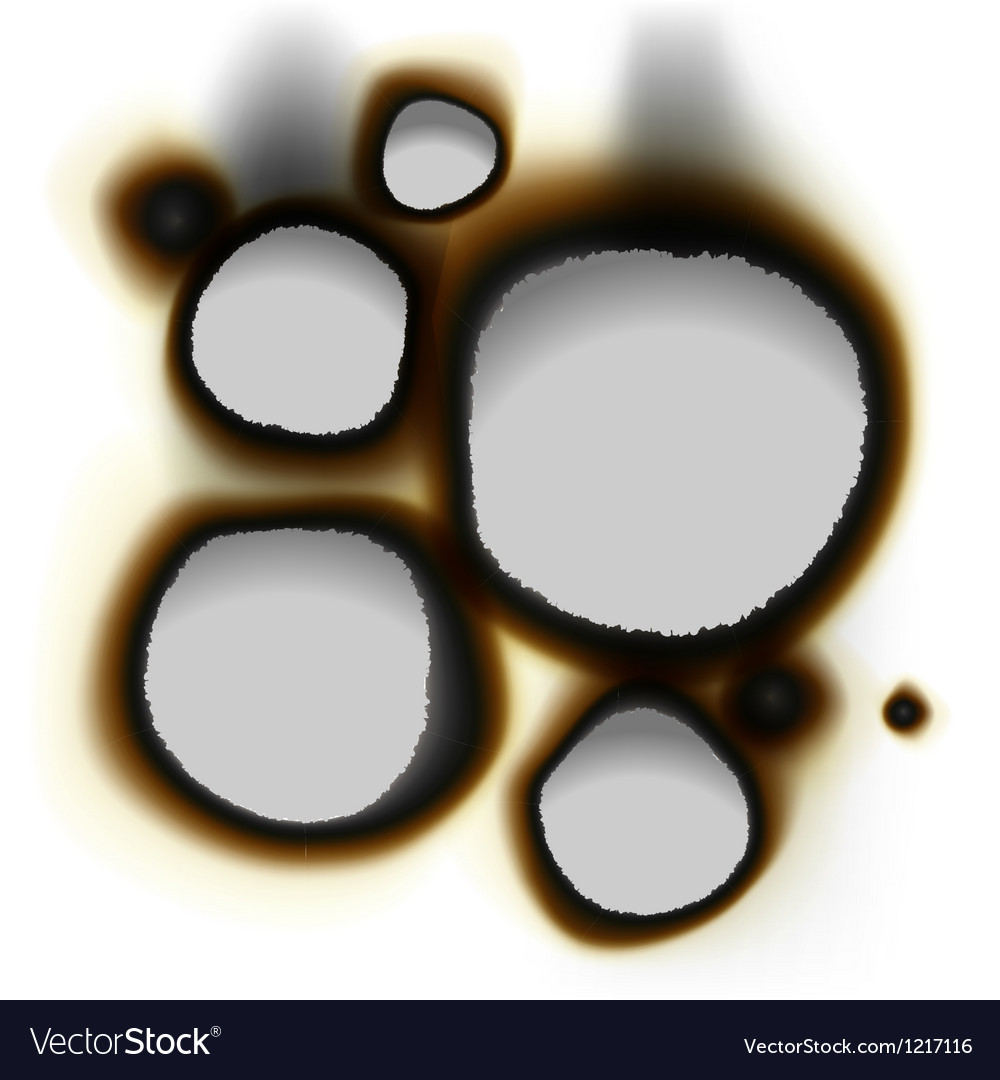 Collection of burnt holes in white paper vector | Price: 1 Credit (USD $1)