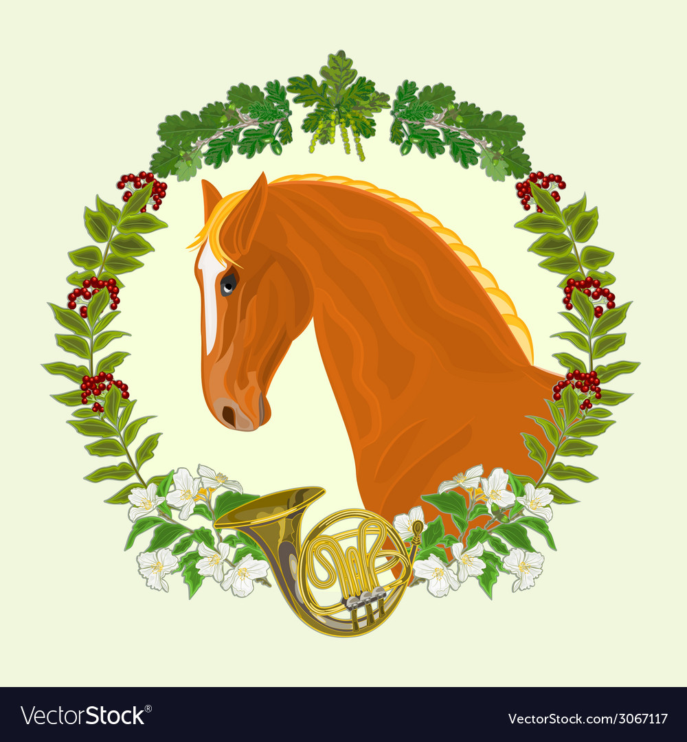 Sorrel horse head of stallion vector | Price: 1 Credit (USD $1)