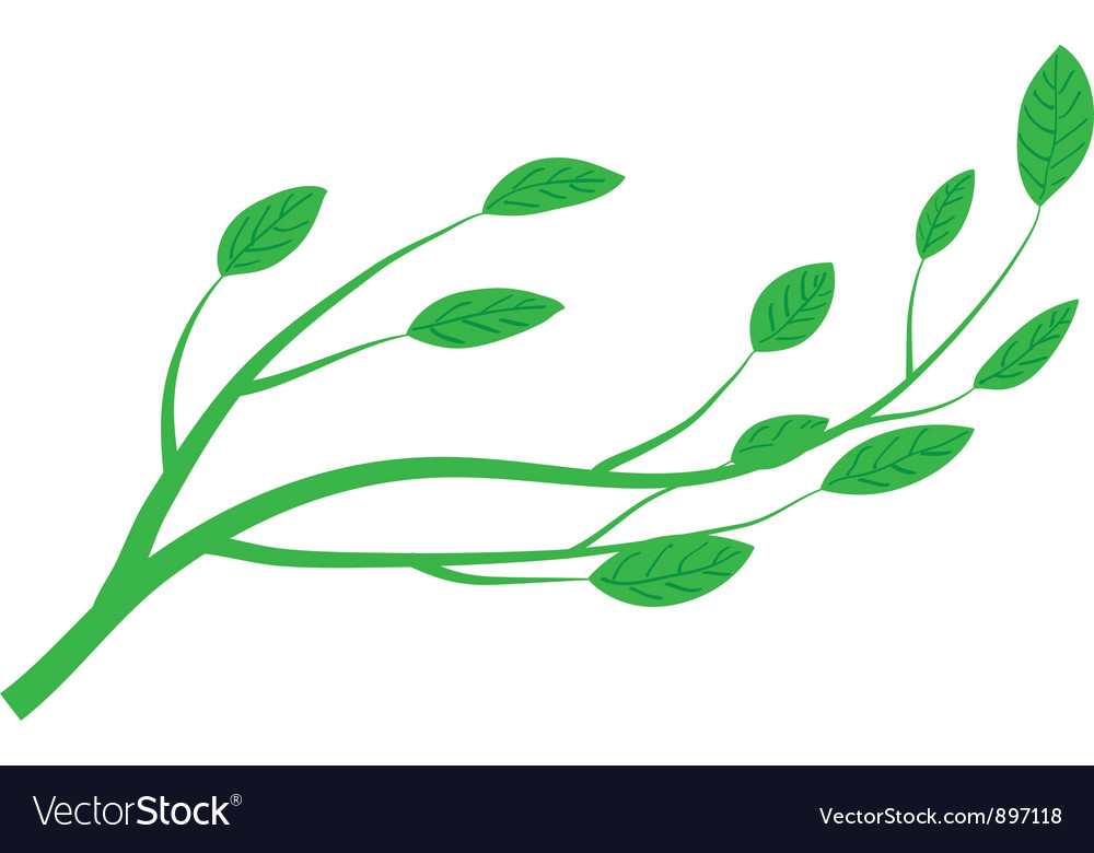 Branch of tree vector | Price: 1 Credit (USD $1)