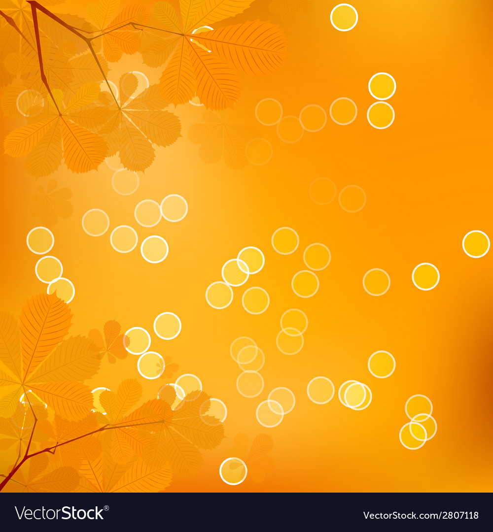 Chestnut leaves of autumn vector | Price: 1 Credit (USD $1)