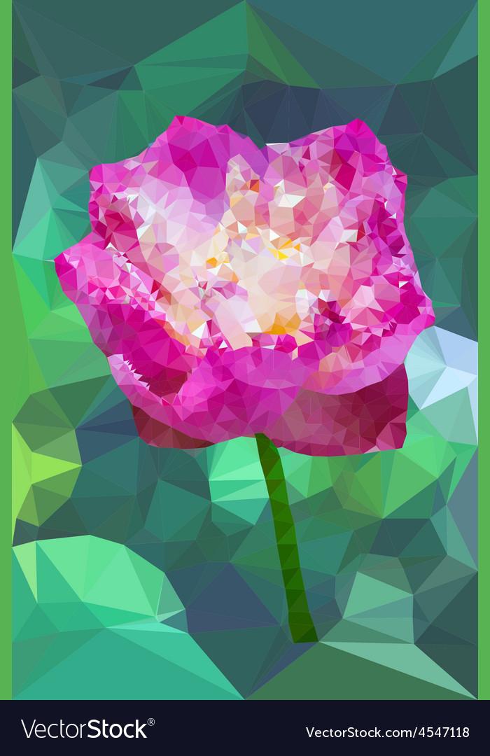 Vivid pink color polygonal lotus flower vector | Price: 1 Credit (USD $1)