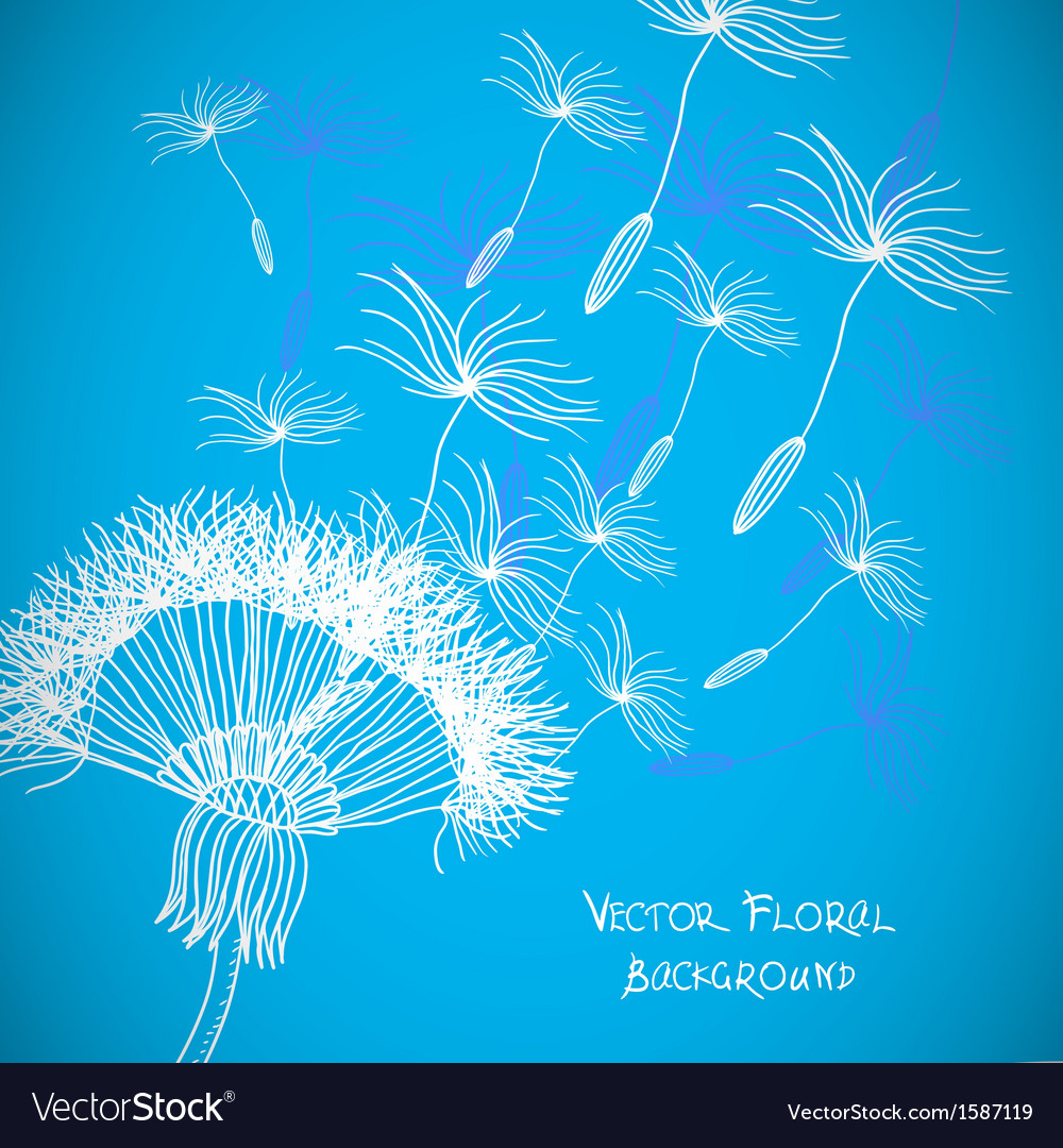 Overblown dandelion background vector | Price: 1 Credit (USD $1)