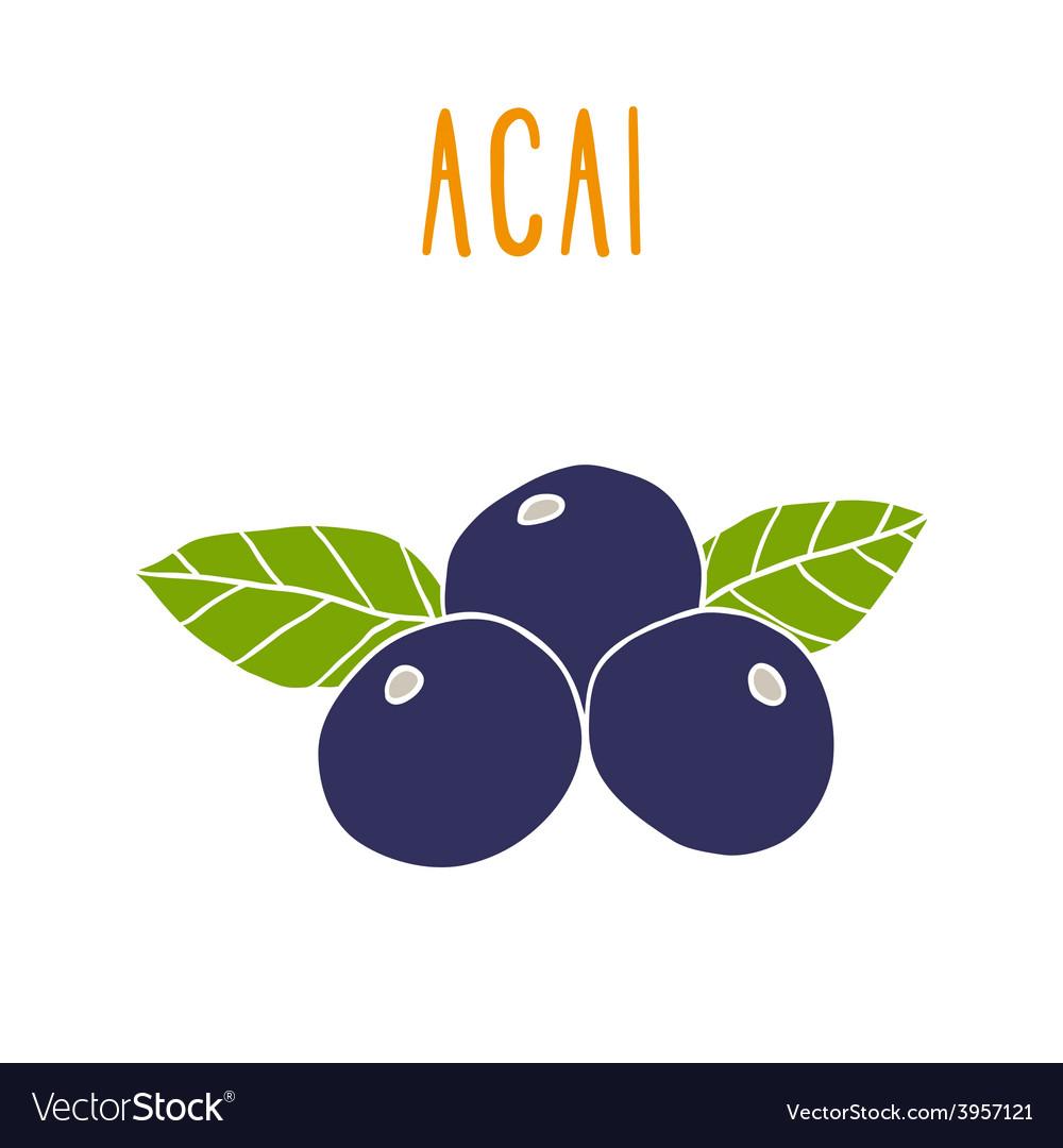 Acai berries vector | Price: 1 Credit (USD $1)