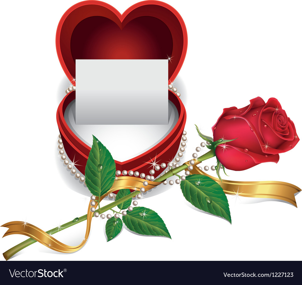 White card in red velvet box and beautiful roses vector | Price: 1 Credit (USD $1)