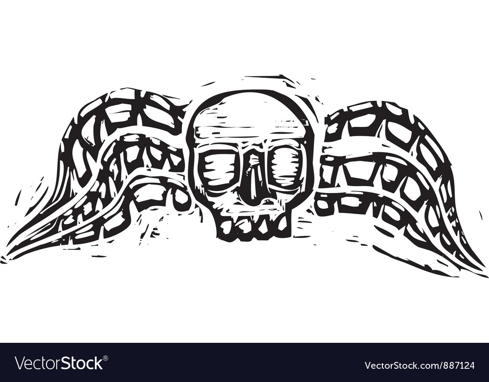 Winged skull vector | Price: 1 Credit (USD $1)