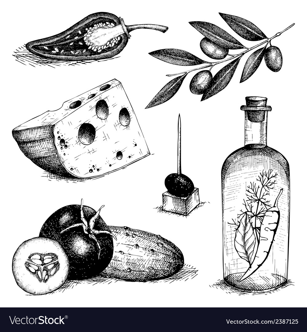 Decorative engraved food isolated on white vector | Price: 1 Credit (USD $1)