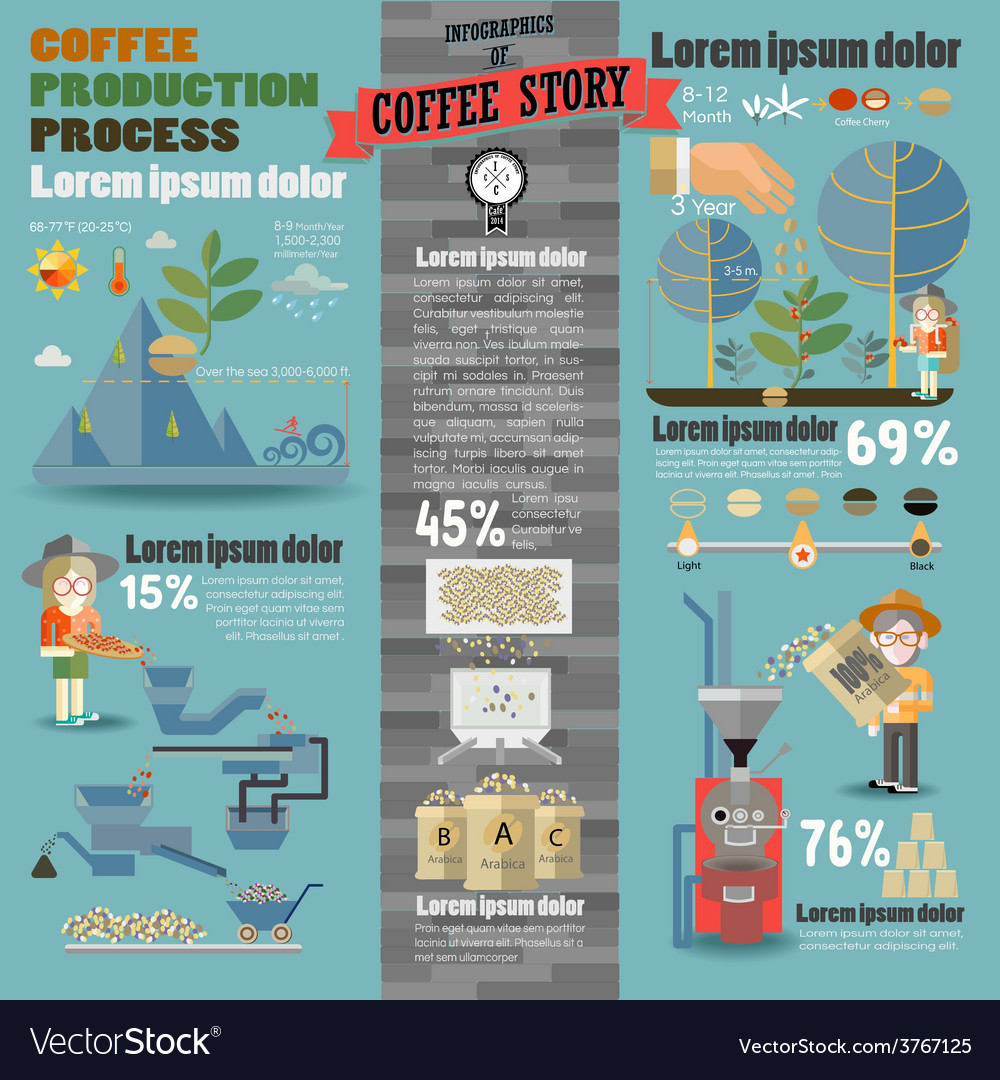 Infographics of coffee story vector | Price: 1 Credit (USD $1)