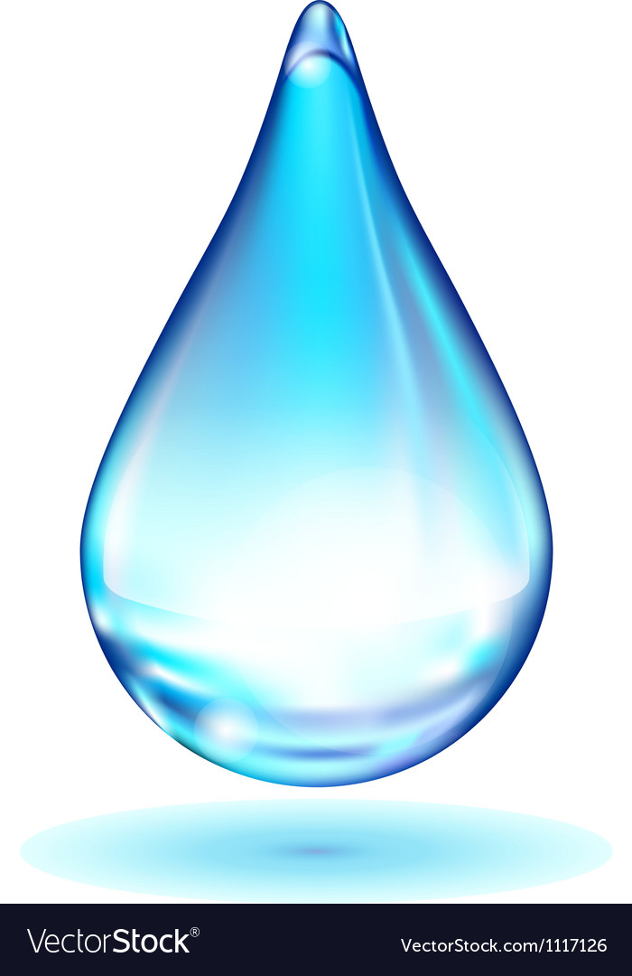 Water drop vector | Price: 1 Credit (USD $1)