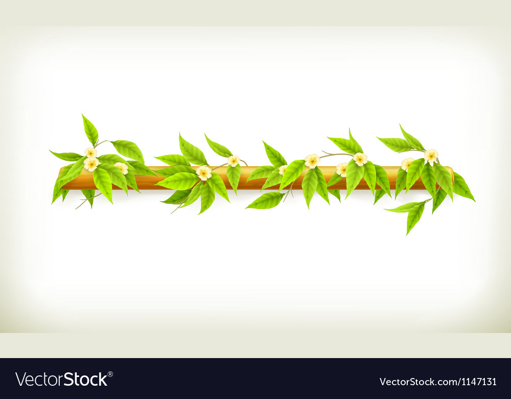 Flowers banner vector | Price: 1 Credit (USD $1)