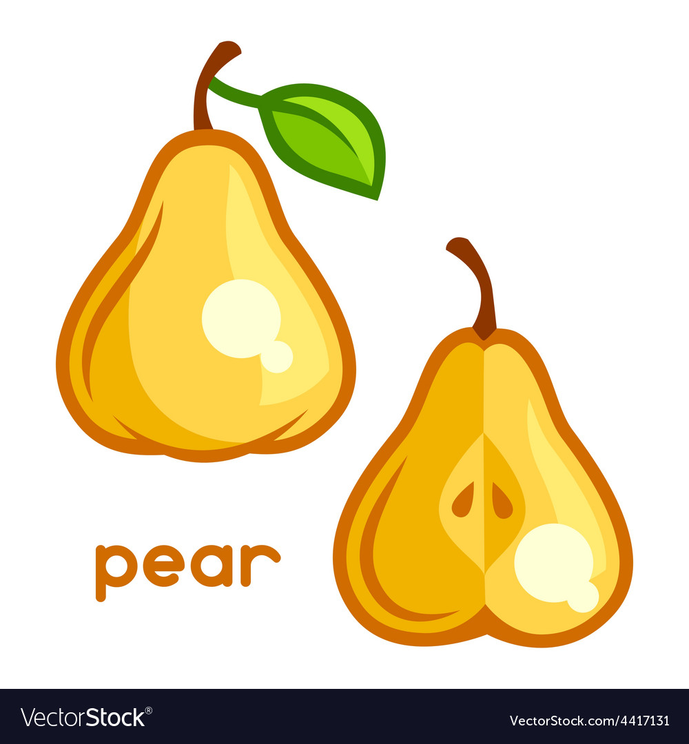 Stylized of fresh pear on white vector | Price: 1 Credit (USD $1)