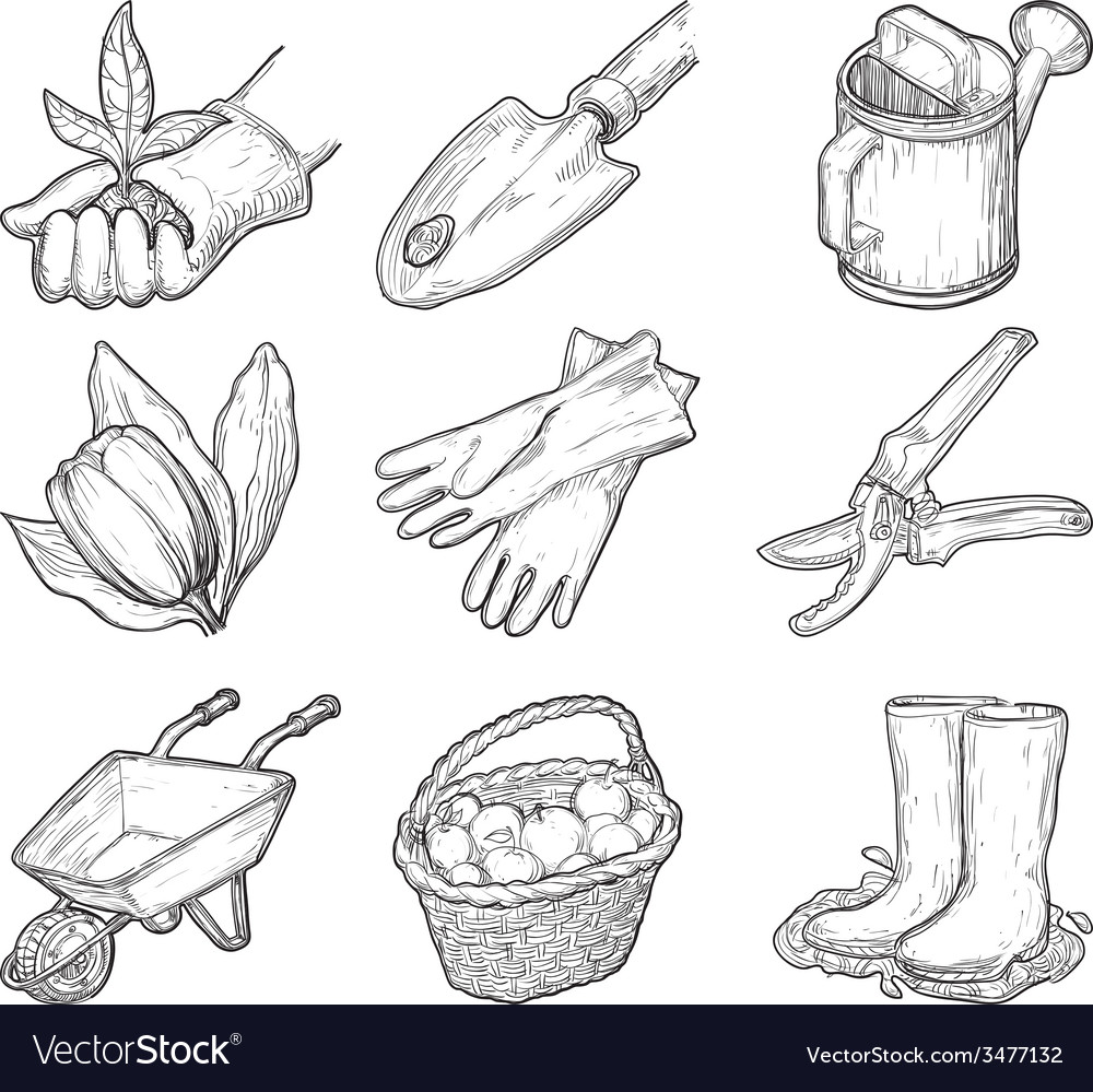 Garden tools and things vector | Price: 1 Credit (USD $1)