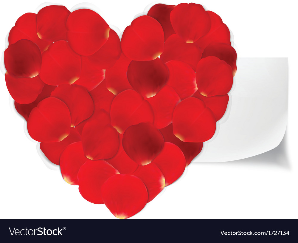 Heart of red petals and blank white paper vector | Price: 1 Credit (USD $1)