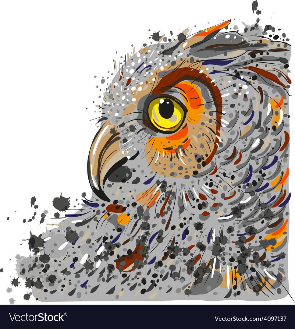 Owls head vector | Price: 1 Credit (USD $1)