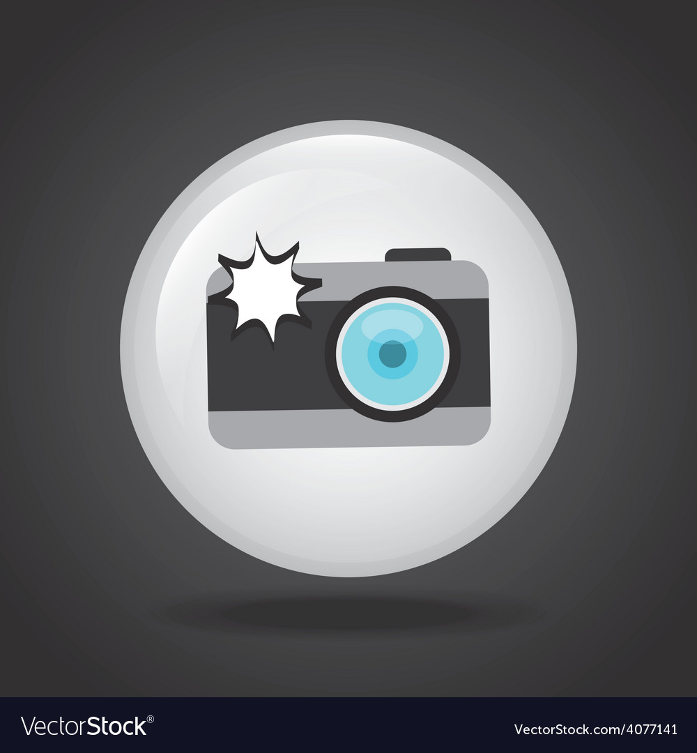 Camera photographic vector | Price: 1 Credit (USD $1)