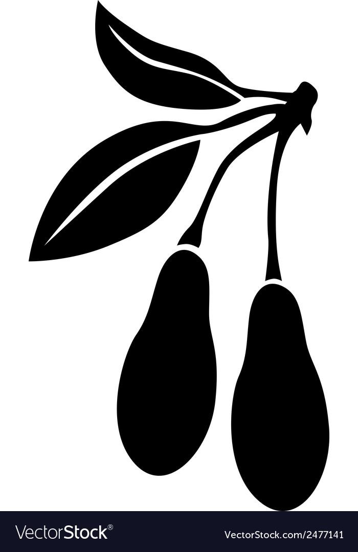 Dogwood berries vector | Price: 1 Credit (USD $1)