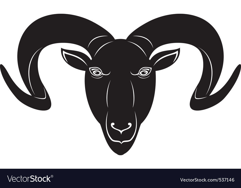 Head of the ram vector | Price: 1 Credit (USD $1)