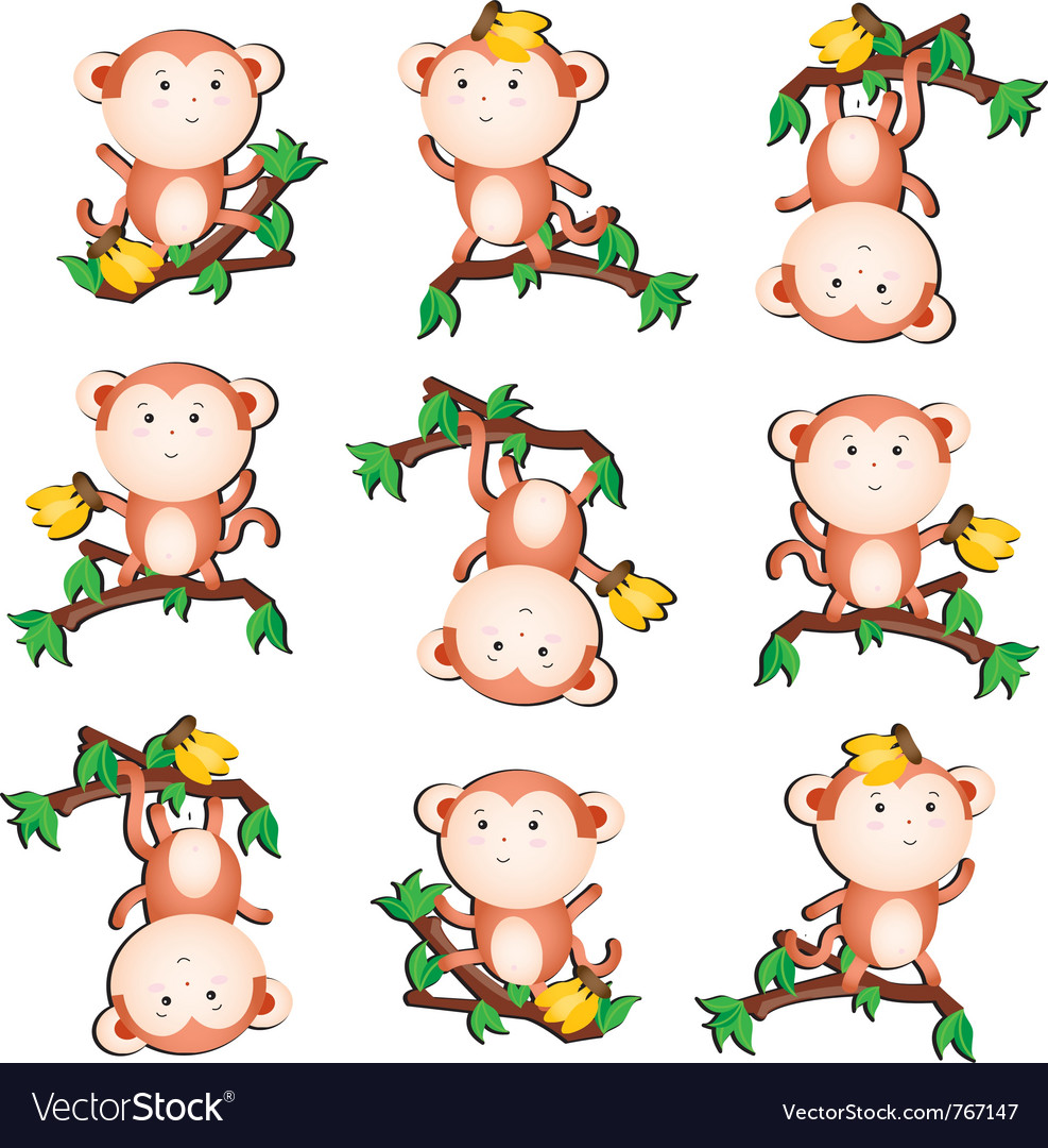 Silly monkey vector | Price: 1 Credit (USD $1)